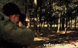 dámszarvas vadászat